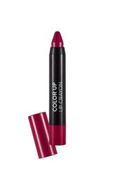Flormar - Flormar Color Up Lip Crayon 06